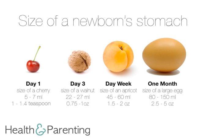 Preparing for Breastfeeding: How much milk will my newborn ...